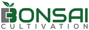Bonsai Cultivation logo